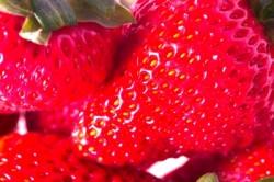 jordgubbar_Ambro_freedigitalphotos.net